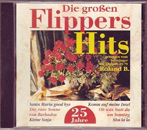 Bild 1: Roland B., 25 Jahre Flippers