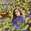Britney Spears, A tribute (2001, performed by Estudio Miami Ritmo)