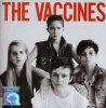 Vaccines, Come of age (2012)