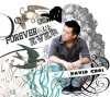 David Choi, Forever and ever (2012)