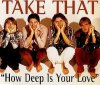 Take That, How deep is your love (1996; 2 tracks, cardsleeve)