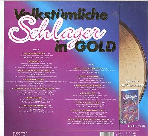 Bild 2: Volkstümliche Schlager in Gold, Kastelruther Spatzen, Wildecker Herzbuben, Patrick Lindner, Andy Borg...