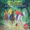 Enid Blyton, Fünf Freunde (52): und das Phantom von Sherwood Forest