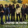 Lynyrd Skynyrd, Icon
