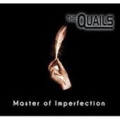Bild 1: Quails, Master of Imperfection