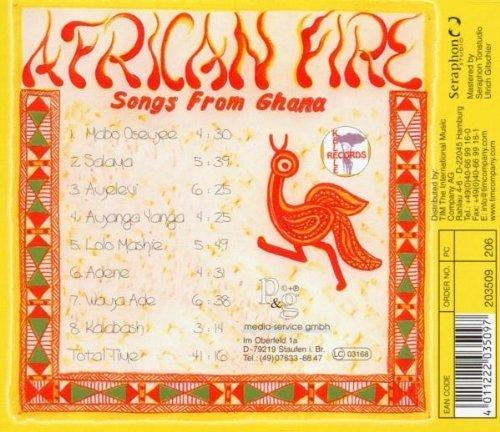 Bild 2: Lizzy Hammond, African fire (Ghanaian Heritage)