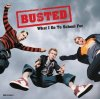 Busted, What I go to school for (US, 3 versions)